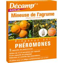 D camp ph romone contre la mineuse des agrumes bonheur bio - Maladie poireau mouche mineuse ...